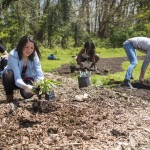jill-wrigley-student-group-planting-food-forest